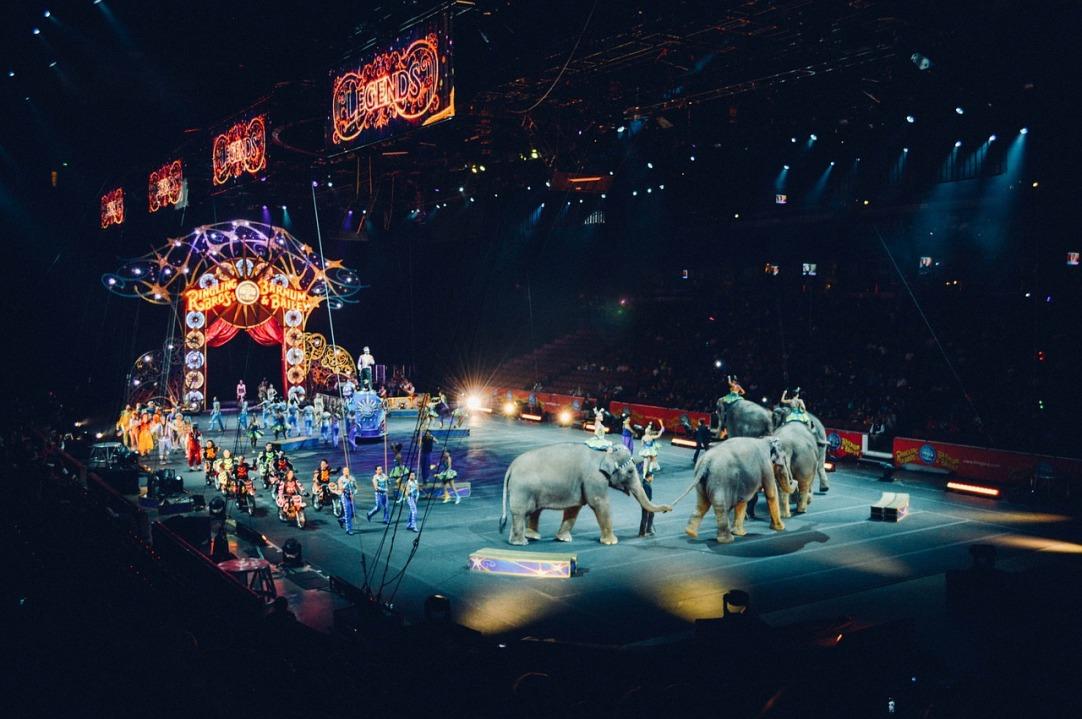 circus-828680_1280